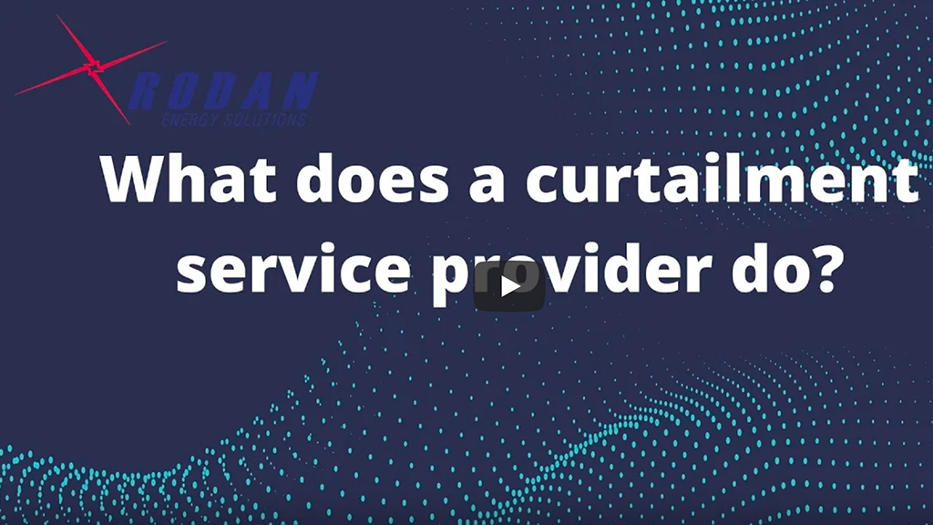 What does a curtailment service provider do?
