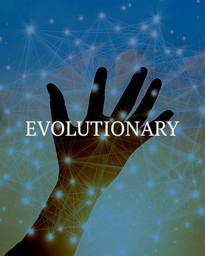 Peak2_flips4x5Evolutionary